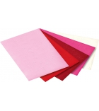 Pochette de 10 feuilles de papier cartonné 50 x 70 cm 220g motifs cœurs