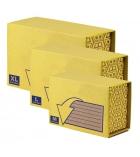 Lot de 10 boîtes postales FELLOWES - hyper résistantes taille XS - 23 x 15 x 5,5 cm