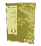Cahier spirale CALLIGRAPHE Forever - papier recyclé - 100 pages - A4 - 5 x 5