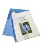 Boîte de 25 chemises préencollées transparentes - dos 3 mm - bleu