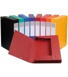 Lot de 10 boîtes EXACOMPTA cartobox  - 24 x 32 cm - dos 5 cm - assortiment