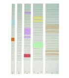 Bande de planning 32 fentes pour fiches T NOBO - 65,5 cm - indice 2