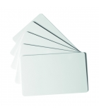 Lot de 100 cartes plastique standard DURABLE - 54 x 85 mm