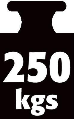 250 kg