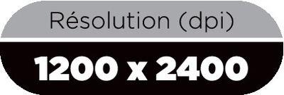 1200 x 2400