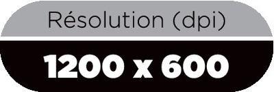1200 x 600